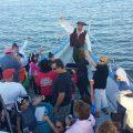 Hampton Beach Pirate Cruise